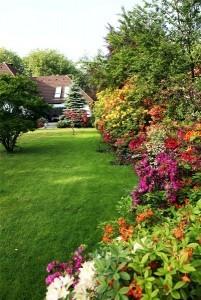 garden-services