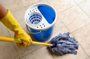 Professional-Cleaners-London
